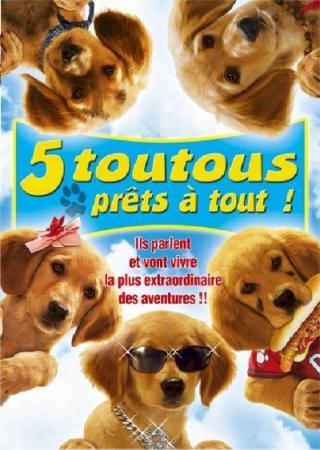 http://nessiecullen.cowblog.fr/images/B/5toutouspretsatout.jpg